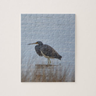 Tricolored Heron Bird Nature Jigsaw Puzzle