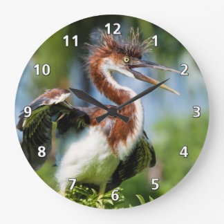 Tricolored Heron Bird with Bad Hair Large Clock