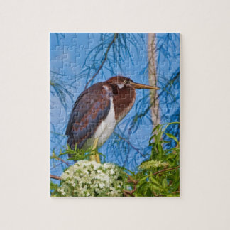 Tricolored Heron in a Tree Puzzle Jigsaw Puzzle