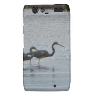 Tricolored Heron Reddish Egret Bird Nature Droid RAZR Cover