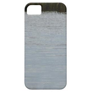 Tricolored Heron Reddish Egret Bird Water Nature iPhone 5/5S Cases
