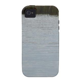 Tricolored Heron Reddish Egret Bird Water Nature Case-Mate iPhone 4 Cover