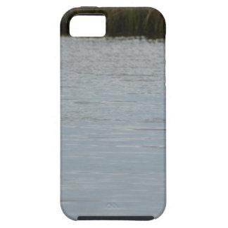 Tricolored Heron Reddish Egret Bird Water Nature iPhone 5/5S Cover