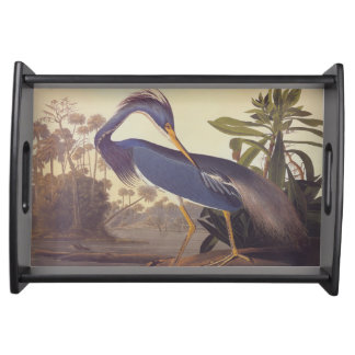 Tricolored Louisiana Heron by John James Audubon Serving Tray