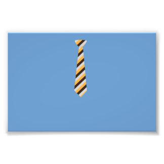 Tricolored Tie Photo