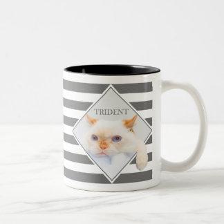 Trident the Cat Striped Coffee Mug_01 Two-Tone Coffee Mug