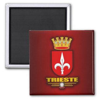Trieste Magnet