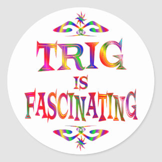 Trig is Fascinating Round Stickers