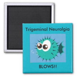 Trigeminal Neuralgia Blows Magnet