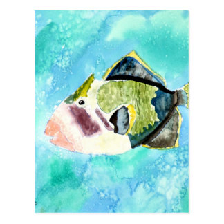 trigger fish sea life painting art prints postcard