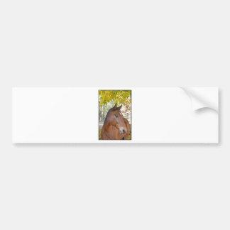Trigger ~ The Incredible Rescue Horse Bumper Sticker