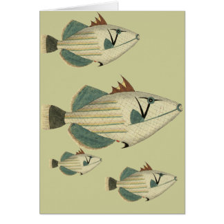 Triggerfish Card