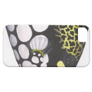 Triggerfish del payaso iPhone 5 carcasas