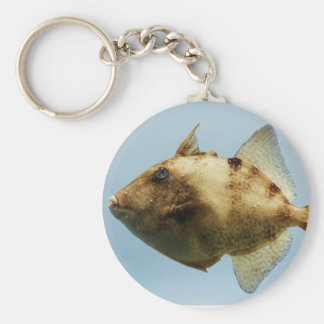 Triggerfish gris llavero redondo tipo pin