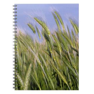 Trigo creciente spiral notebook