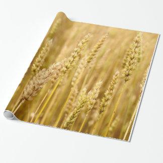Trigo de oro papel de regalo