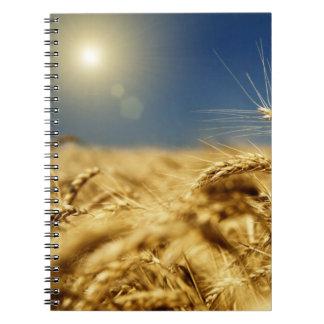 Trigo del oro y cielo azul con el sol libro de apuntes con espiral
