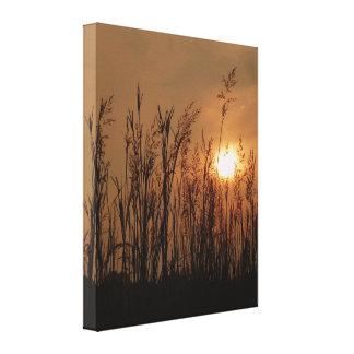 Trigo en la puesta del sol - vertical impresiones en lona
