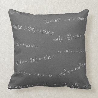 Trigonometry & Algebra Pillow