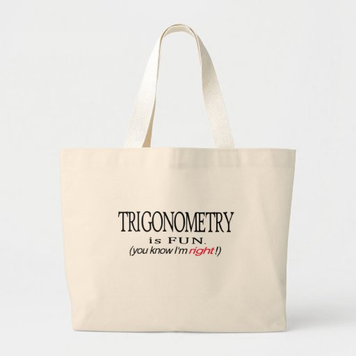 Trigonometry _ is fun _ you know I'm right Canvas Bag