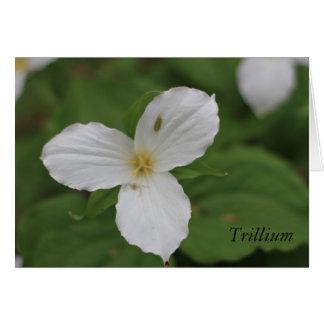 Trillium Card