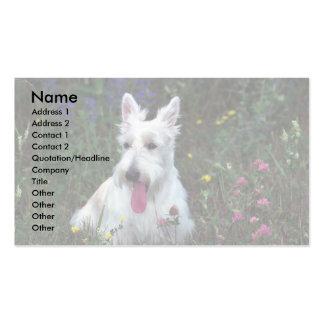 Trillium, escocés Terrier (blanco) Plantillas De Tarjetas De Visita