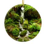 Trillium Falls at Redwood National Park Ceramic Ornament