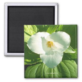 Trillium Flower 2 Inch Square Magnet