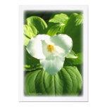 Trillium Flower 5x7 Paper Invitation Card