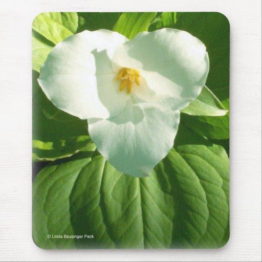 Trillium Flower Mouse Pad