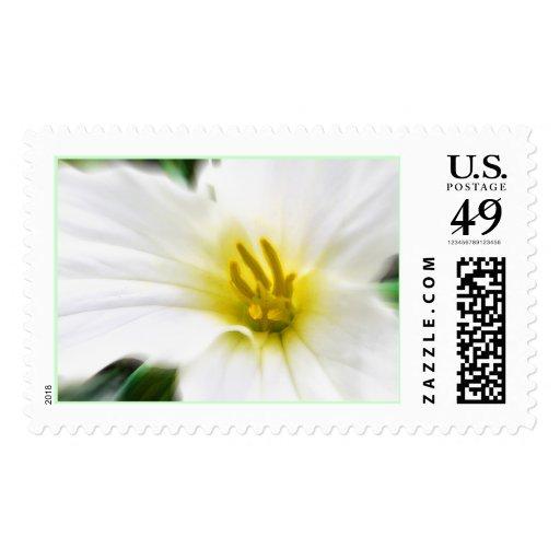 Trillium Stamp