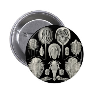 Trilobite! Button