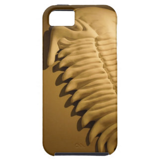 Trilobite Casting iPhone SE/5/5s Case