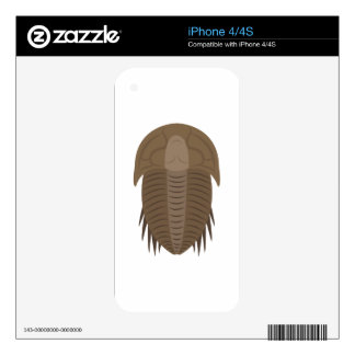 Trilobite Decal For iPhone 4