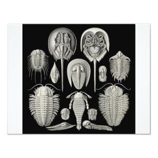 Trilobite! Personalized Invitation