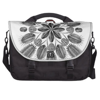 Trilobite Mandala Laptop Commuter Bag