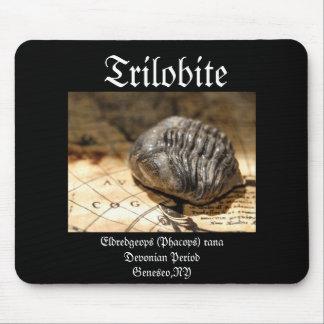 Trilobite Mousepads