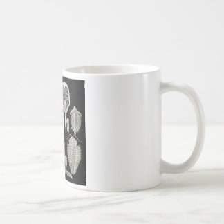 ¡Trilobite Tazas De Café
