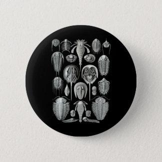 Trilobites and Sea Scorpions Pinback Button