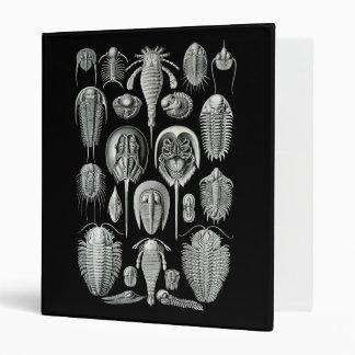 "Trilobites y escorpiones de mar carpeta 1"""