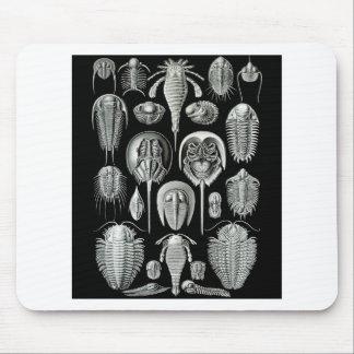 Trilobites y escorpiones de mar mouse pads