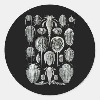 Trilobites y escorpiones de mar pegatina redonda