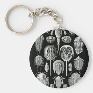 Trilobites y fósiles en blanco y negro llavero redondo tipo pin