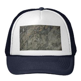 Trilobyte completamente sólido gorras de camionero