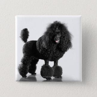 Trimmed black Poodle Button