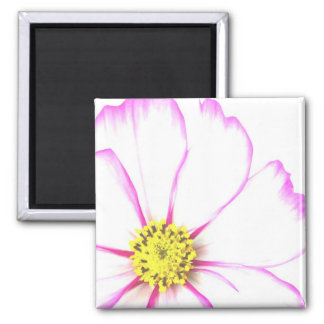 Trimmed In Pink 2 Inch Square Magnet