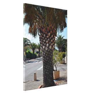 Trimmed palm tree close up canvas prints