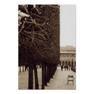 Trimmed Trees Palais Royal Paris Poster