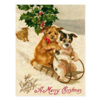 Trineo del perro del navidad tarjeta postal