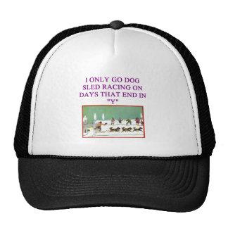 trineo del perro que compite con al amante del idi gorras de camionero